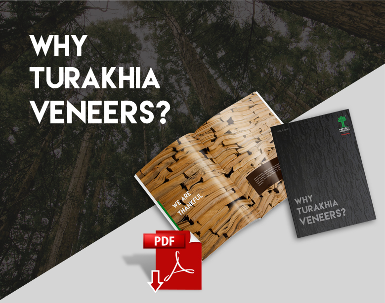 Why Turakhia Veneers